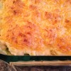 "Cheddar Cheese Biscuit ""Potpie"" ~ S"
